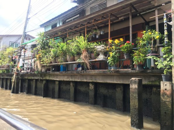 Khlong River Houses