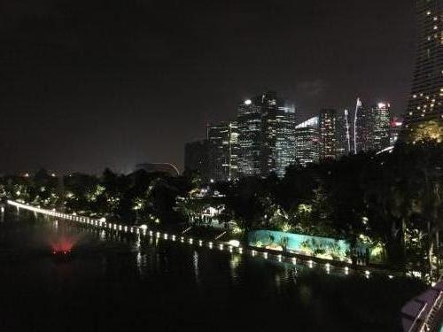 Gardens By the Bay bei Nacht